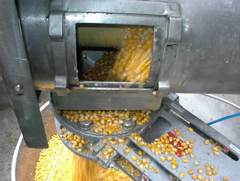 Nedves kukorica